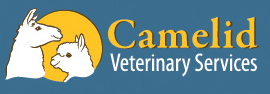 Camelid Veterinary Services